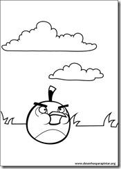 angry_birds_bad_piggies_desenhos_colorir_pintar_imprimir-11