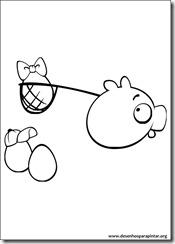 angry_birds_bad_piggies_desenhos_colorir_pintar_imprimir-26