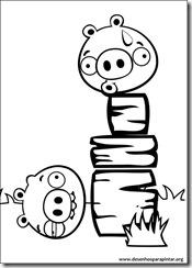 angry_birds_bad_piggies_desenhos_colorir_pintar_imprimir-28